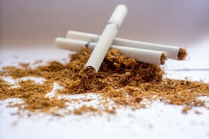 The Long and Short of It: Unfiltered Tobacco